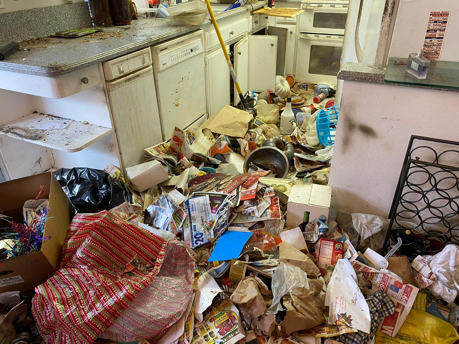 Extreme Cleaning - Decluttering, Organizing your Home and Getting your life back!