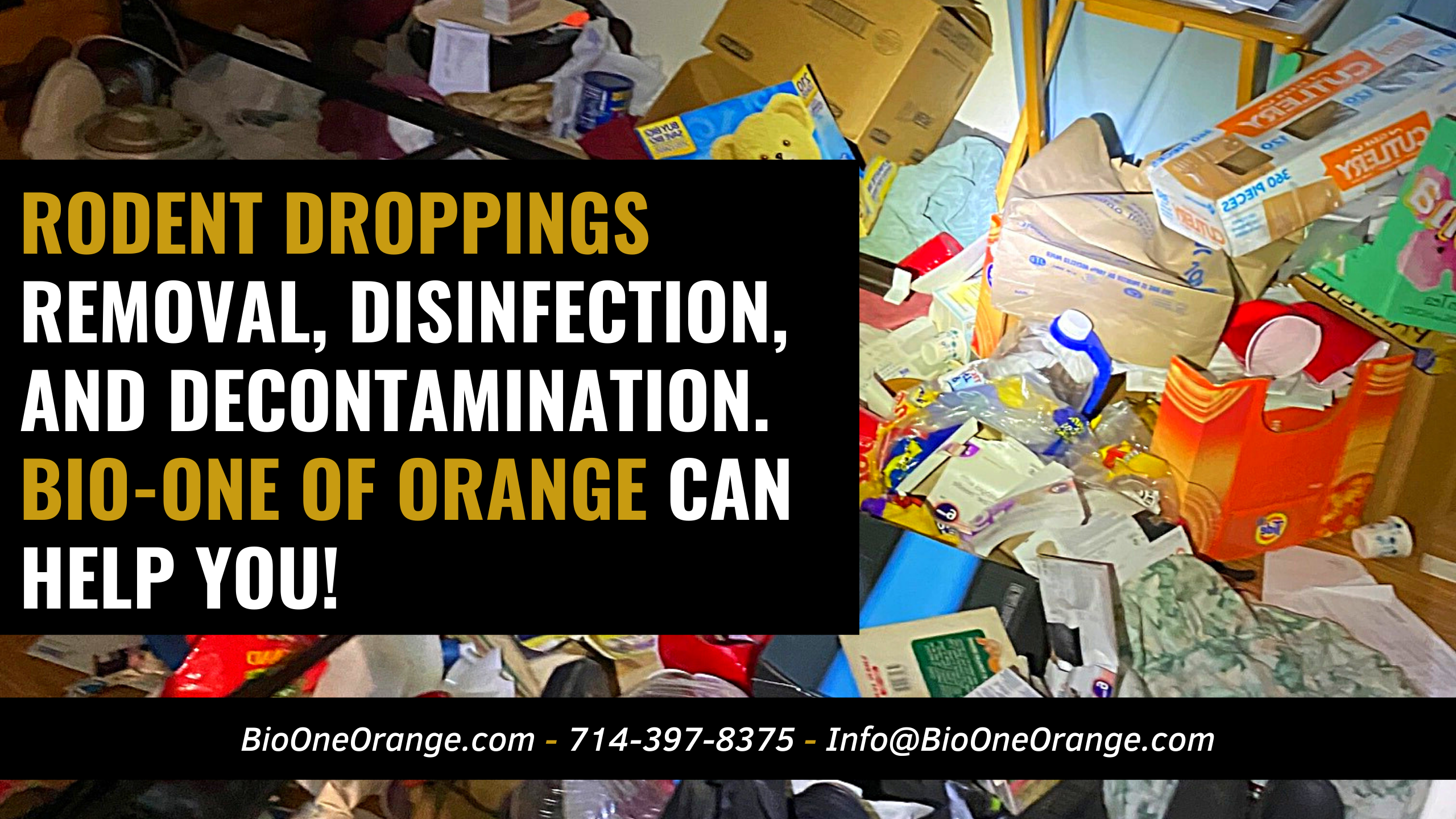 Rodent droppings removal, disinfection, and decontamination - Bio-One of Orange can help you!